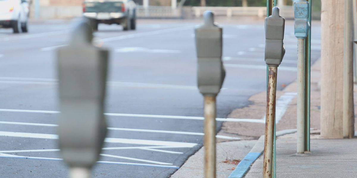 Jackson councilmen approve bid to overhaul downtown parking meters