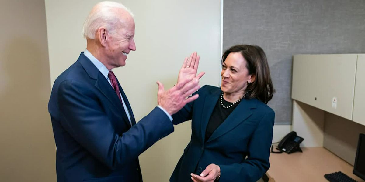 Biden picks Kamala Harris as his running mate