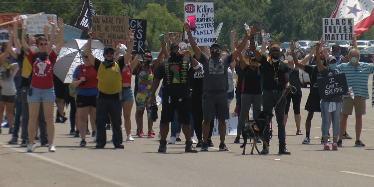 Protesters march from Hattiesburg to Petal to 'bridge the gap'