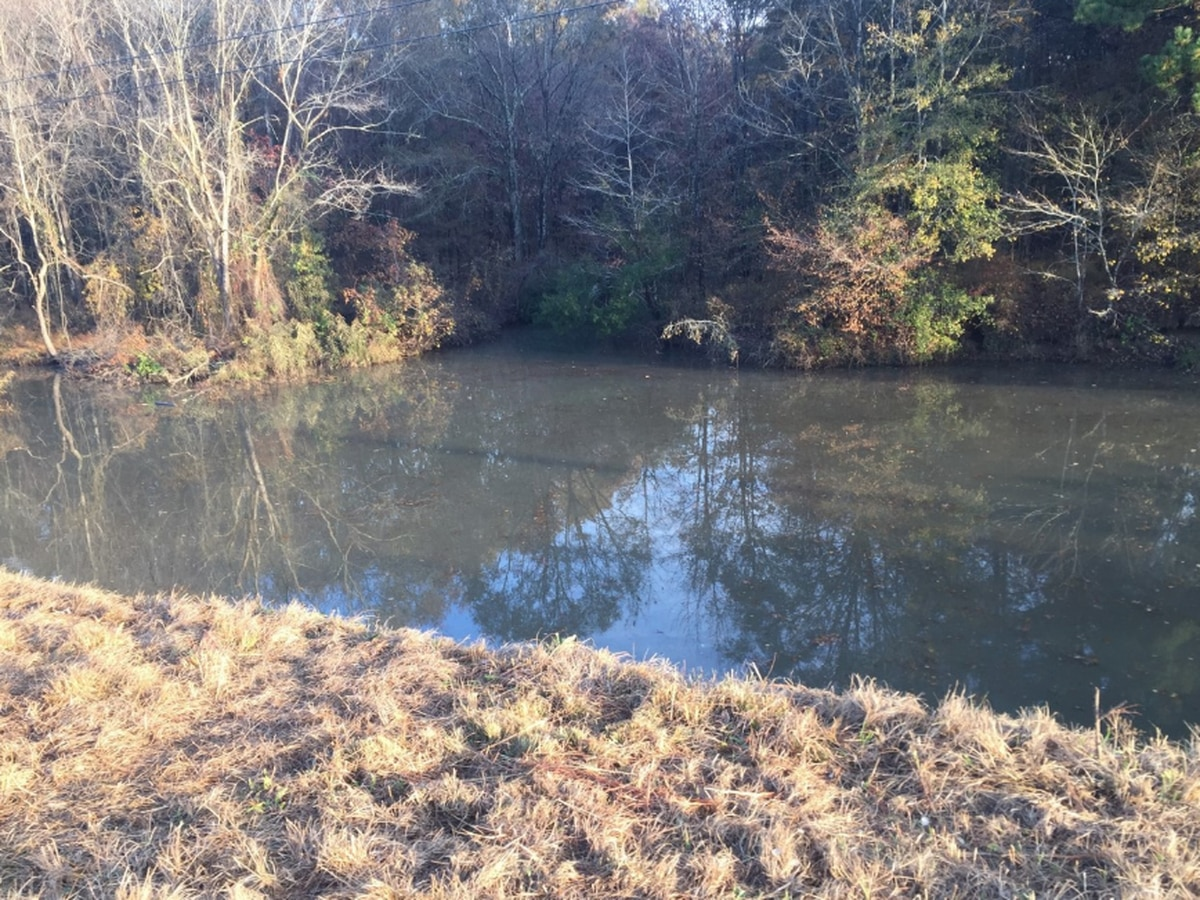 'A miracle:' Teen escapes safely after car crashes into deep water
