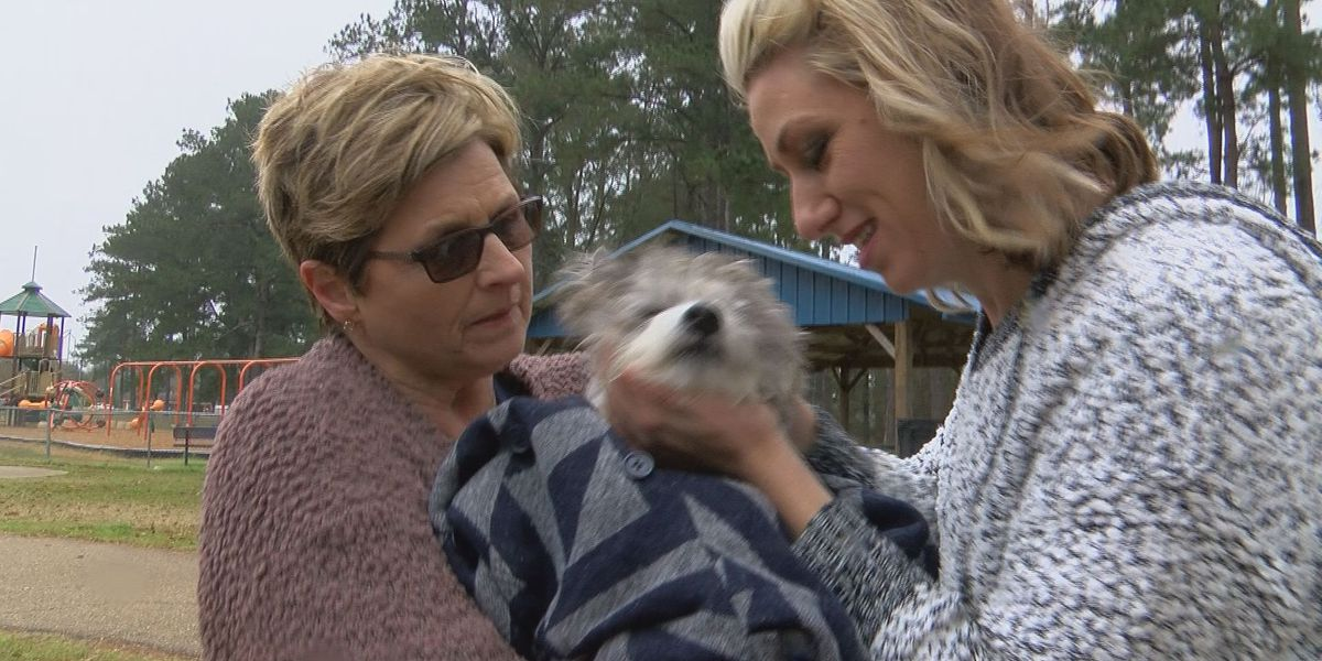 Lincoln Co. family reunites with lost dog that was shipped to Iowa