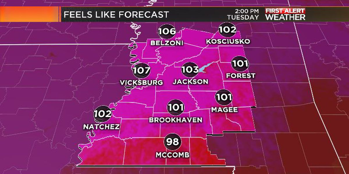 First Alert Forecast: August heat and humidity to continue...