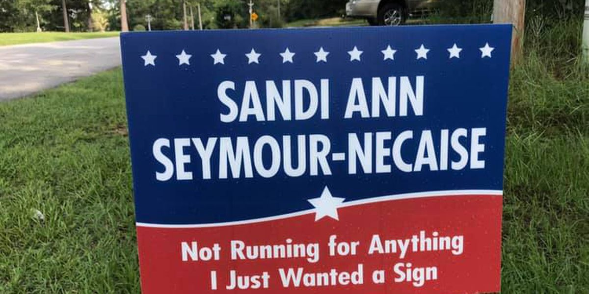 She's not running for anything, but she has a sign