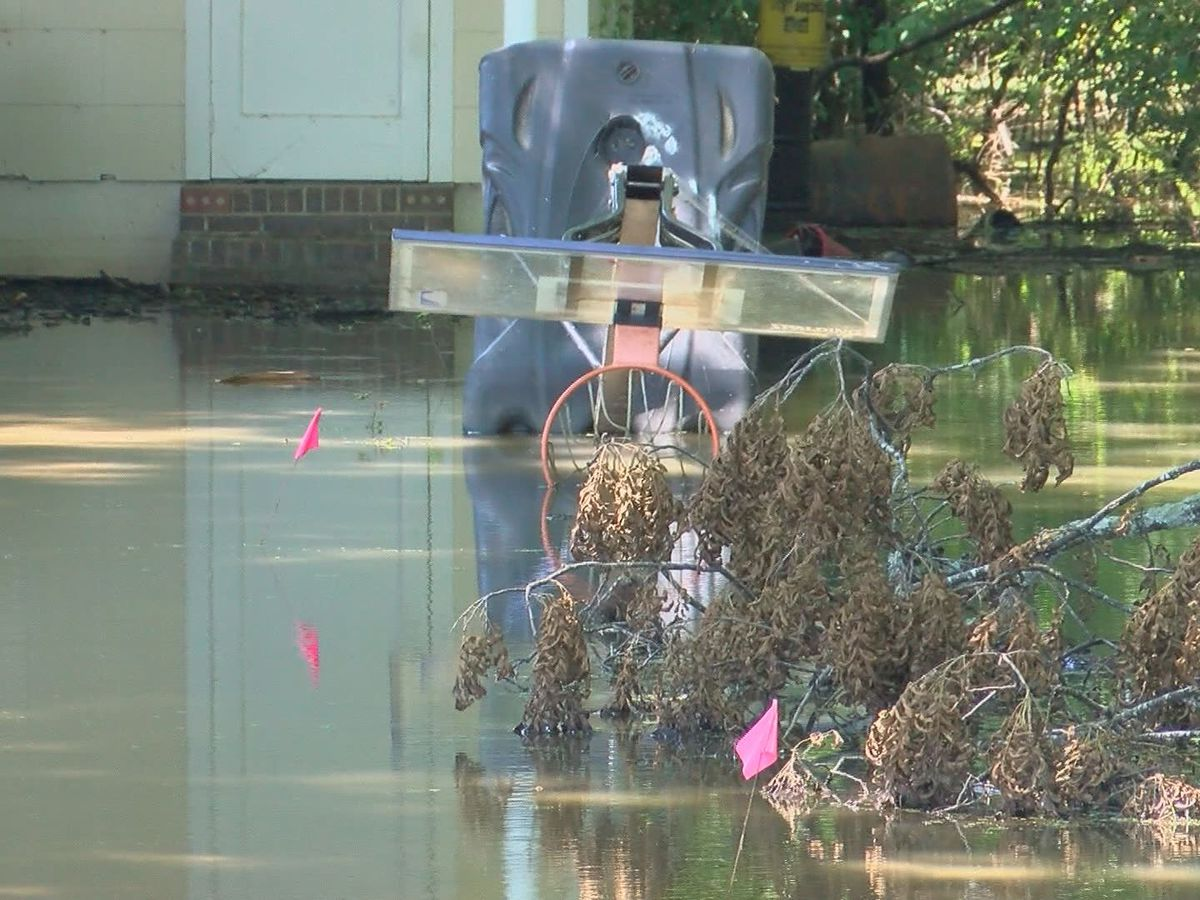 Holly Buff residents pushing for Yazoo pumps to relieve backwater flooding