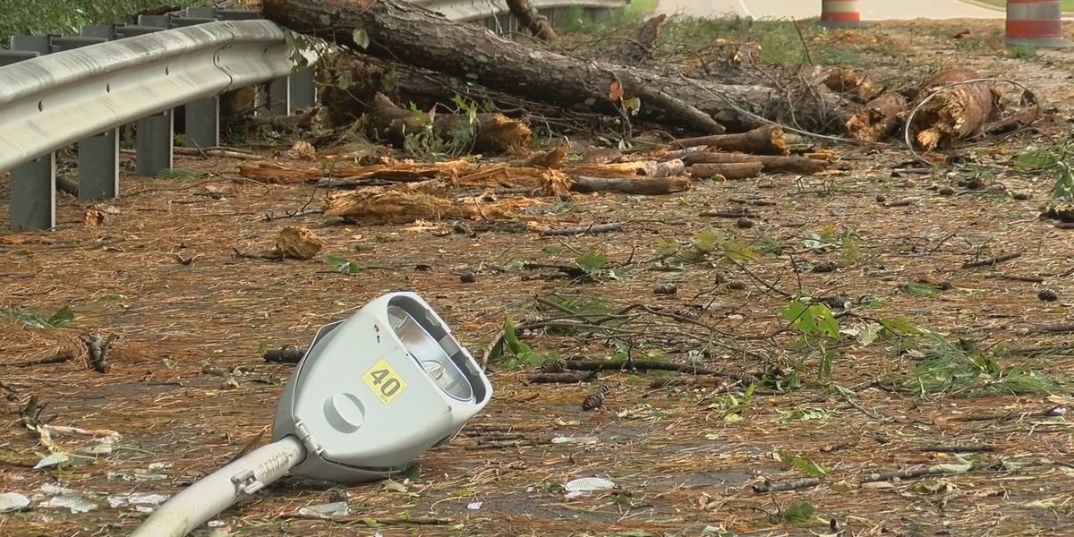 Damage and debris: Forceful winds leave Forest residents without power
