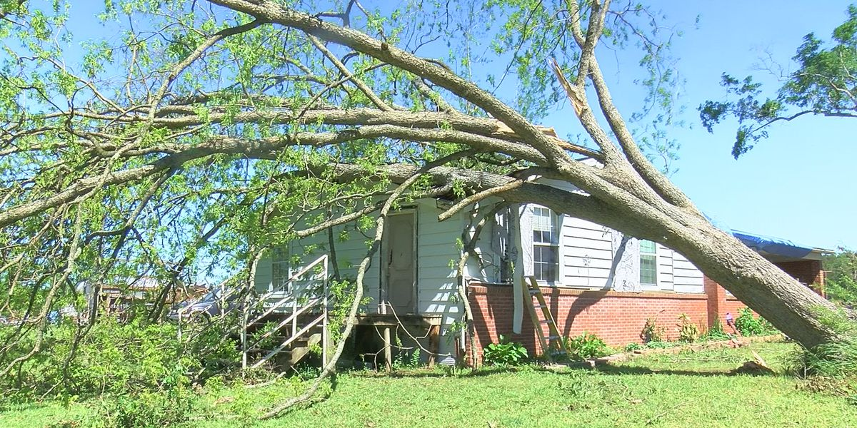 """""""By the Grace of God we are here today:"""" Brandon homeowner recounts surviving storm"""