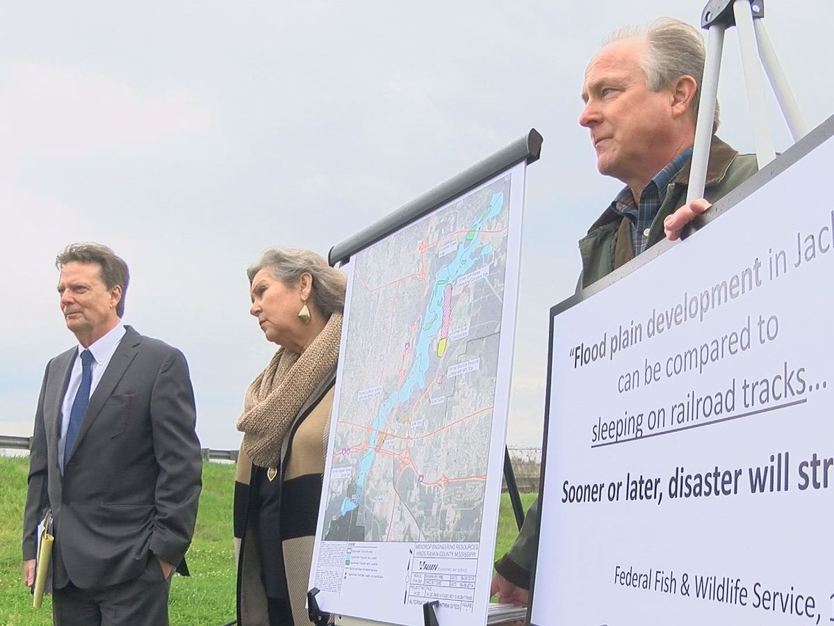 One Lake opponents say alternatives cheaper, cause less environmental impact