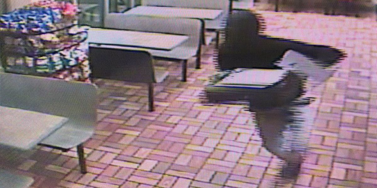 Suspects wanted after armed robbery of local restaurant