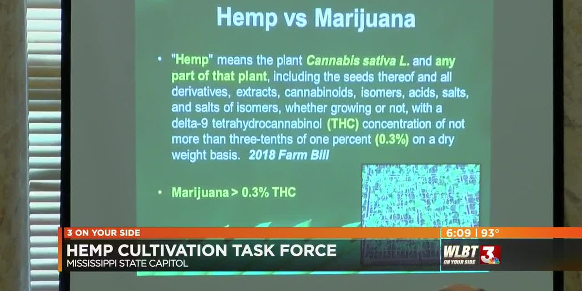 Mississippi's Hemp Cultivation Task Force holds first meeting