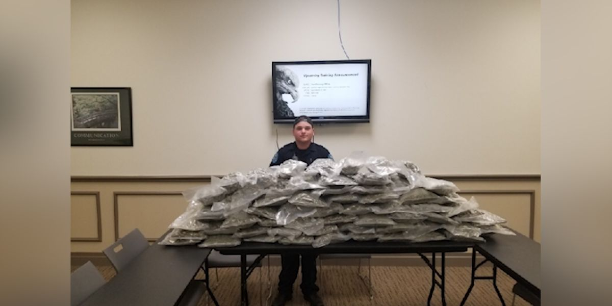 Pearl officer seizes 60 pounds of marijuana during checkpoint stop