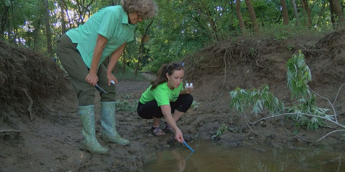 Citizen scientists help collect water quality data along Pearl River
