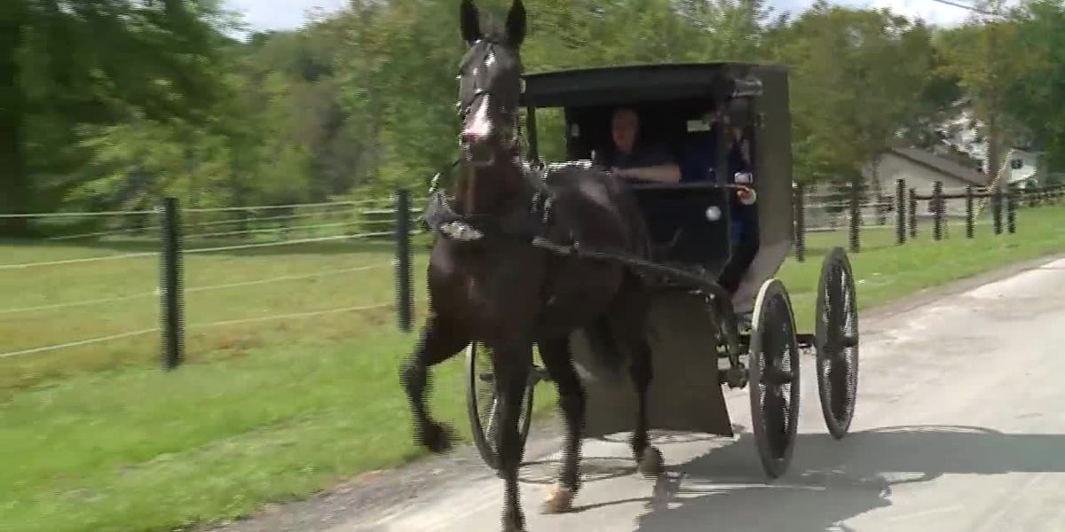 2 Amish men flee after drinking and driving a buggy in Ohio