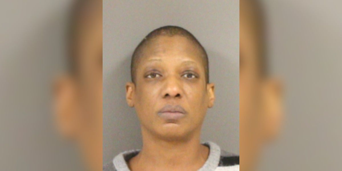 Woman faces multiple charges after sideswiping, fleeing sheriff's deputy