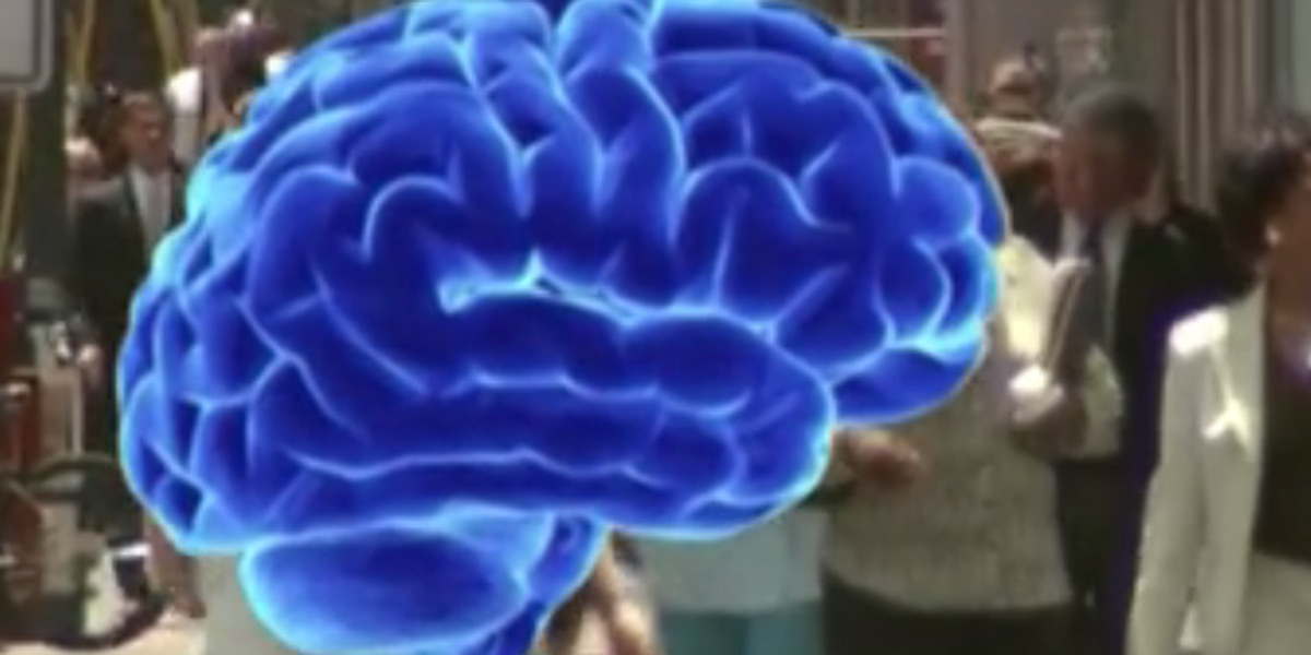 Could diet ward off some brain diseases?