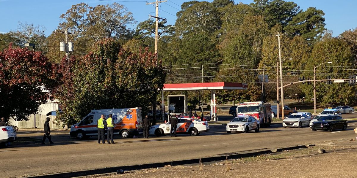 JPD: Pedestrian hit, killed near Terry Road