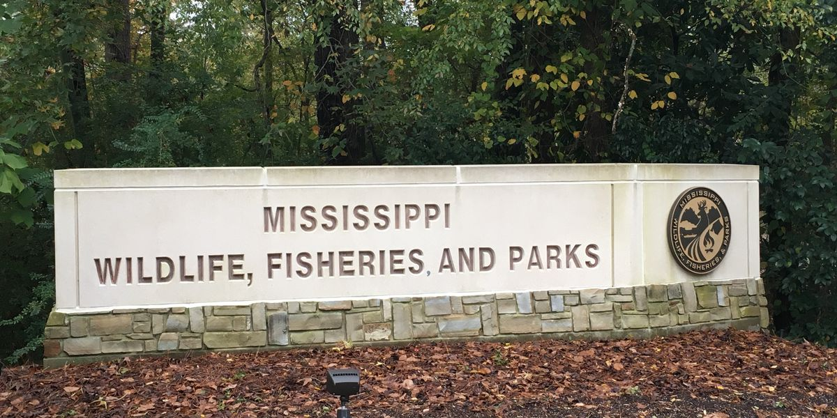 Hunting season comes to an early end along MS River due to flooding