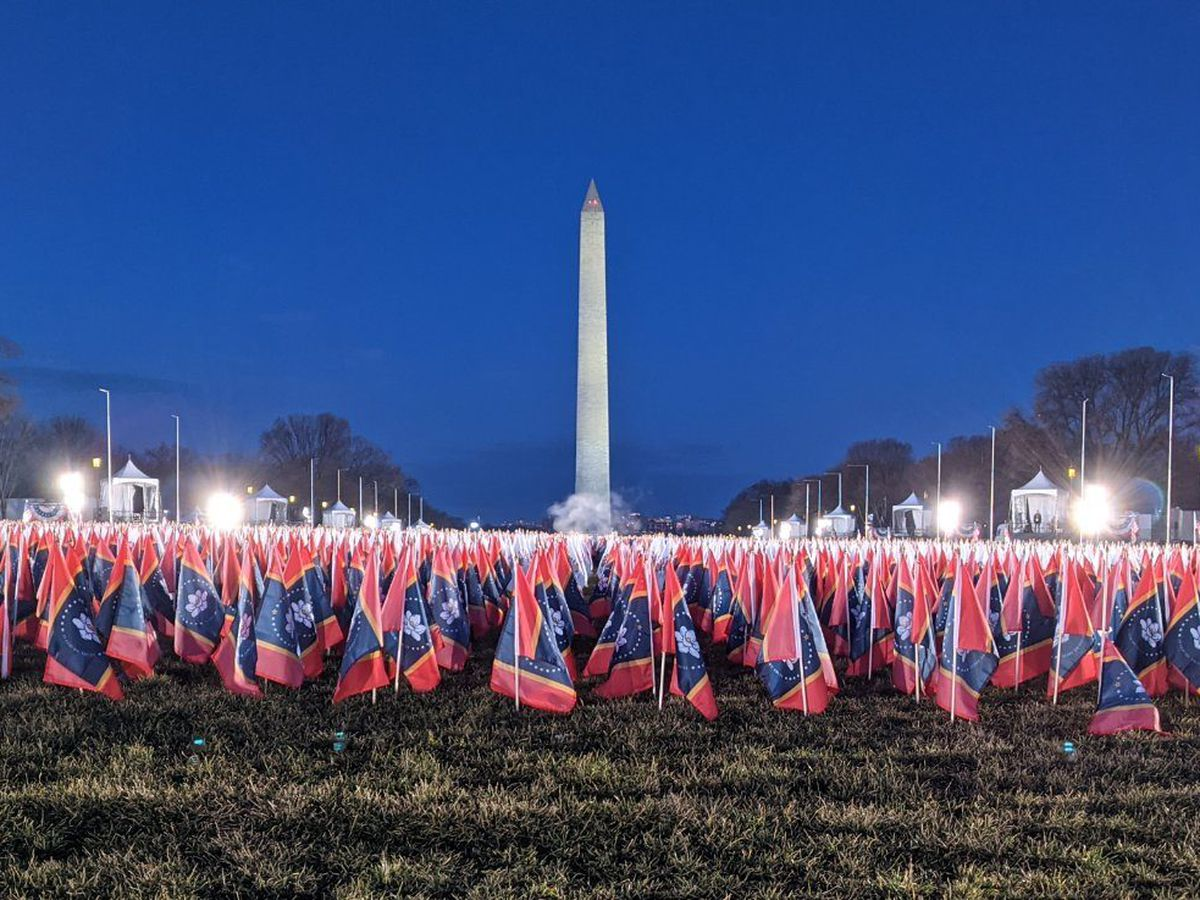 State flags on National Mall will be handed out to Mississippians