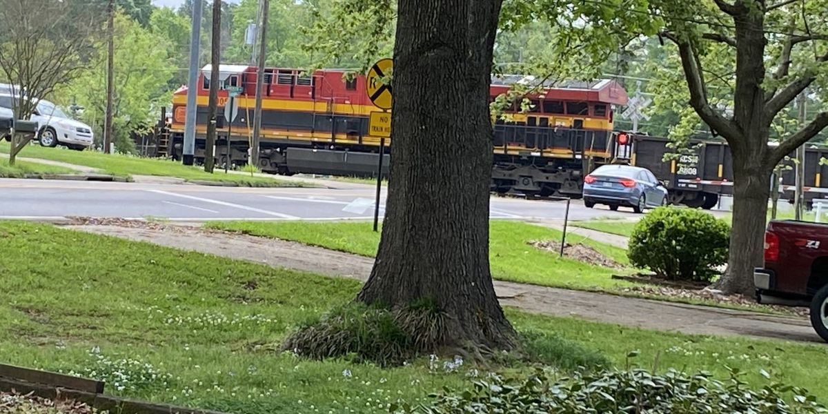 Train stopped in Clinton after hitting tree limb