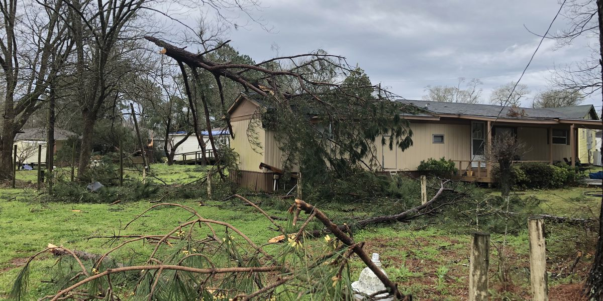 Flora woman breaks 8 ribs after tree crashes into bedroom