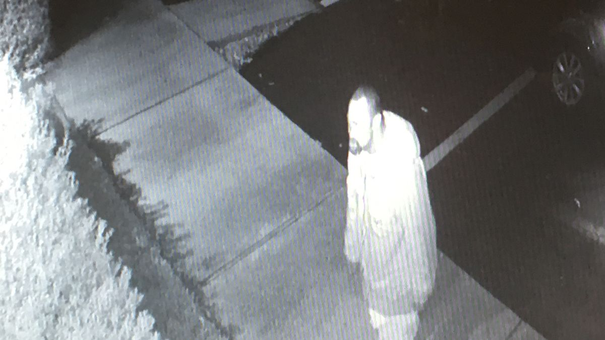 Grinch steals Christmas wreaths from local business