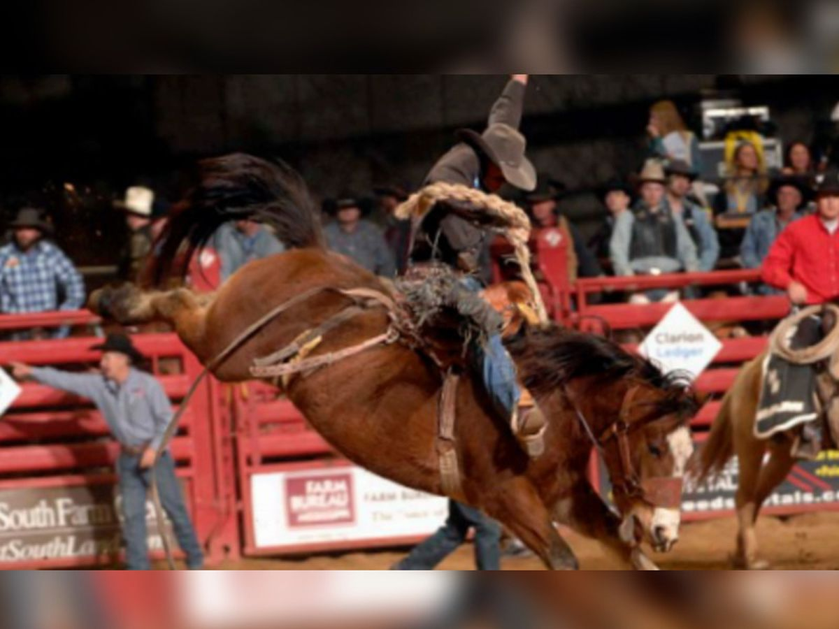 Dixie National Livestock Rodeo opens Friday; COVID-19 guidelines in play
