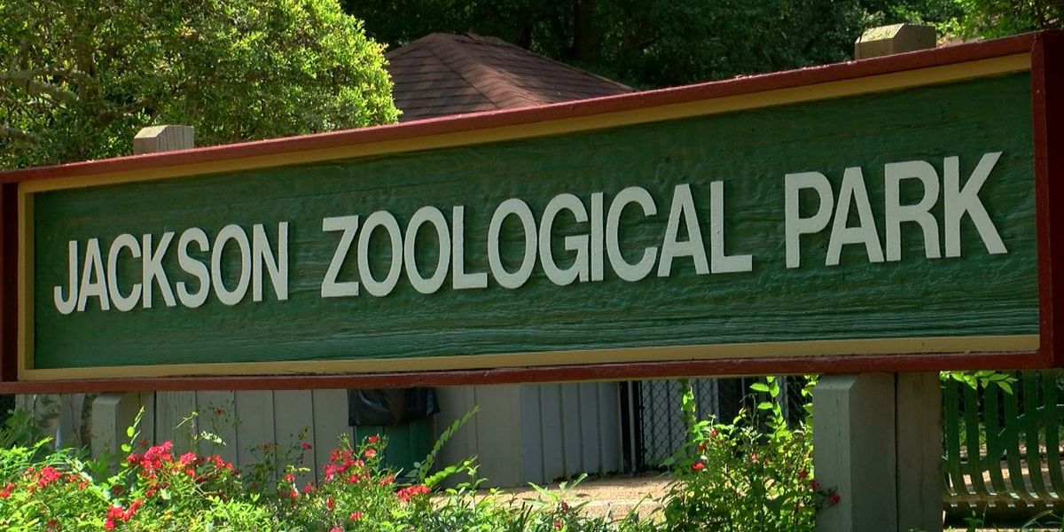Lumumba ready to bring ZoOceanarium contract back to council