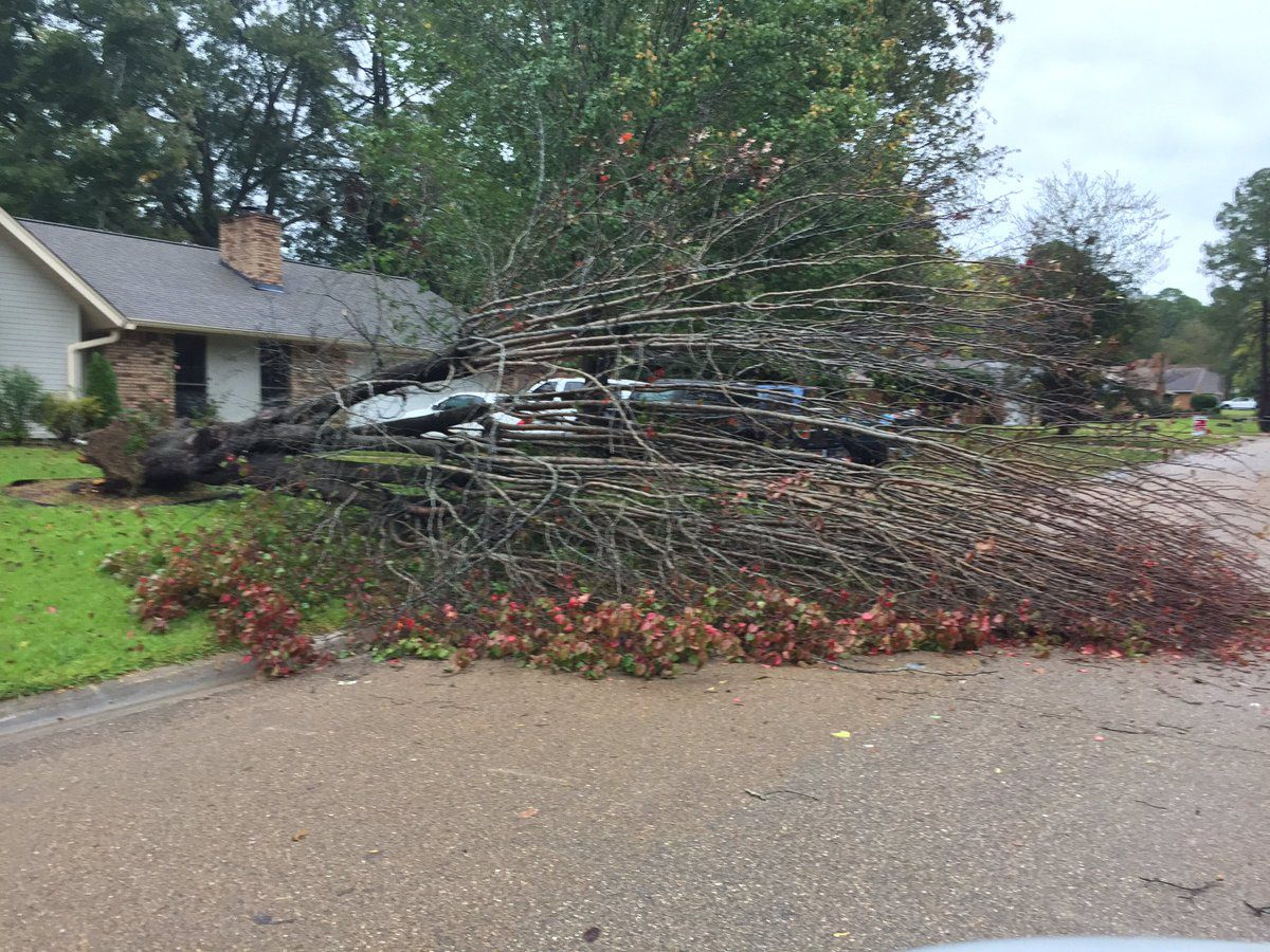 Several Counties Report Damage From Early Morning Storms