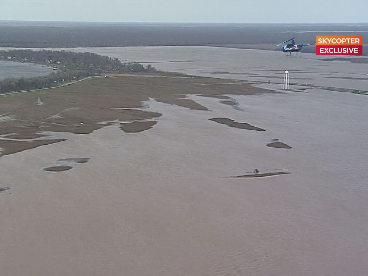 Conservationists voice support for backwater pumps as flooding continues in the Delta