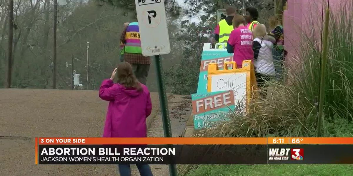 Opponents and supporters react to proposed heartbeat bills