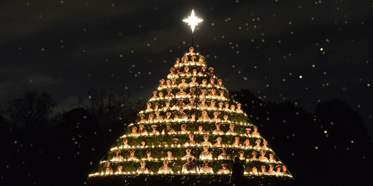 Belhaven cancels annual 'Singing Christmas Tree' due to COVID-19