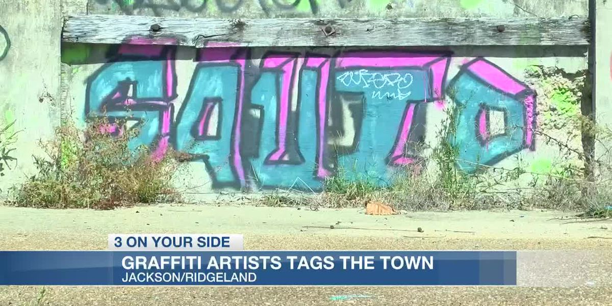 Graffiti artist causing headaches for businesses and law enforcement