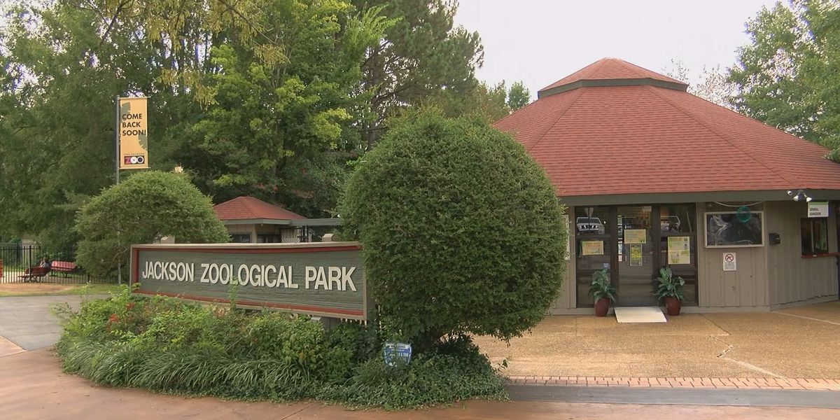 Mayor expects Jackson Zoo to open in Spring 2020