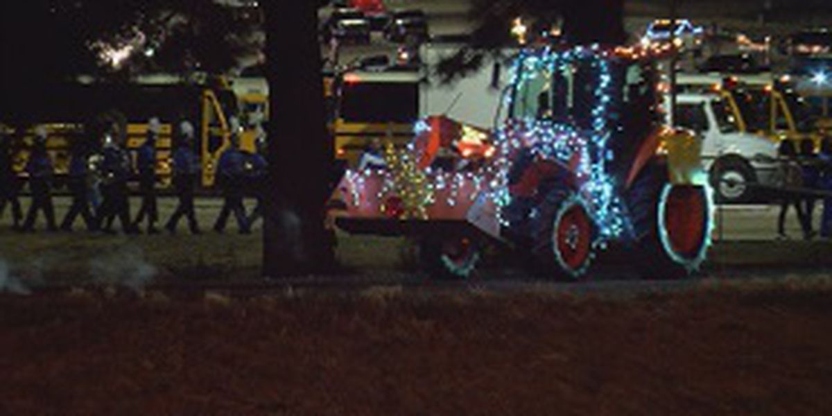 Winter Nights and Magical Lights for Terry's annual Christmas parade