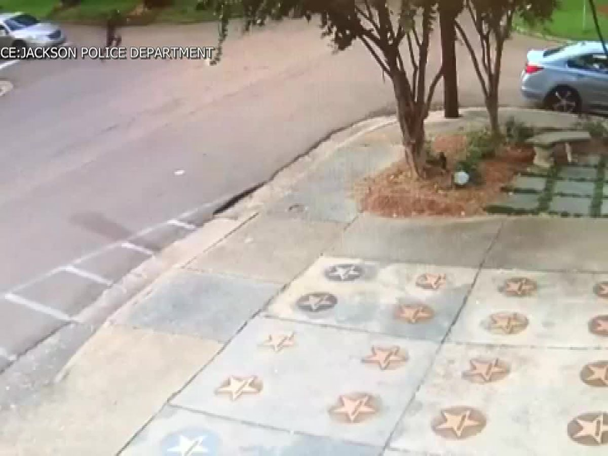 VIDEO: JPD searching for purse snatcher caught on surveillance video