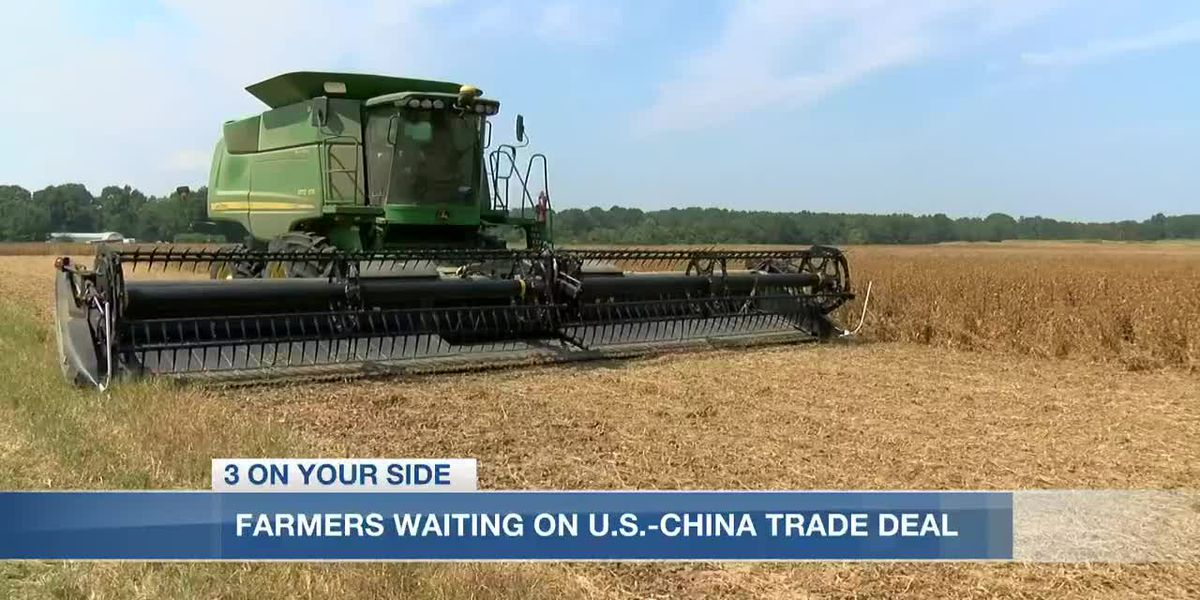 Soybeans to China impact