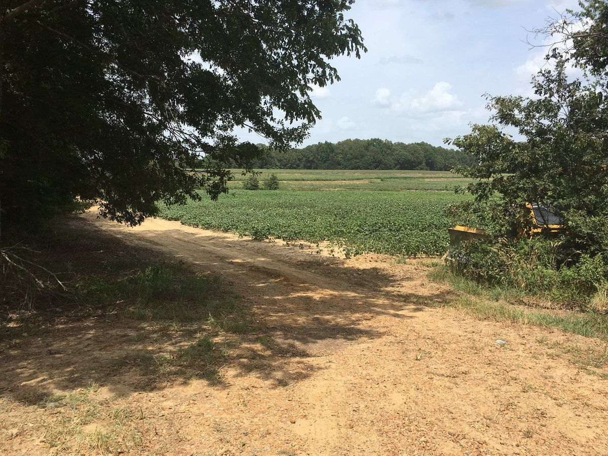 SHERIFF: Decomposed body found in Yazoo County could possibly be missing Louisiana man