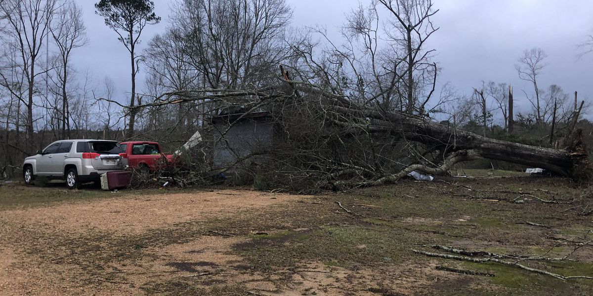 15 tornadoes reported in Mississippi as governor declares state of emergency