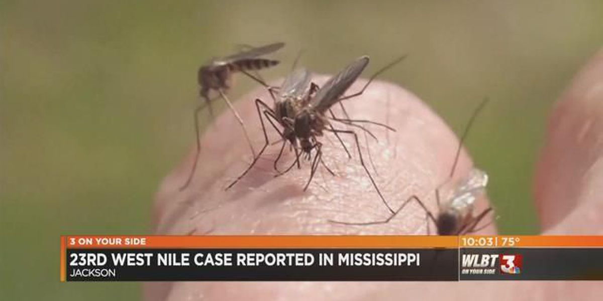 23rd case of West Nile reported in MS; brings total to 9 in Hinds County