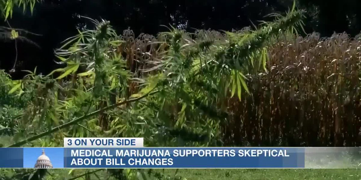 Medical marijuana supporters skeptical about legislative changes to Initiative 65