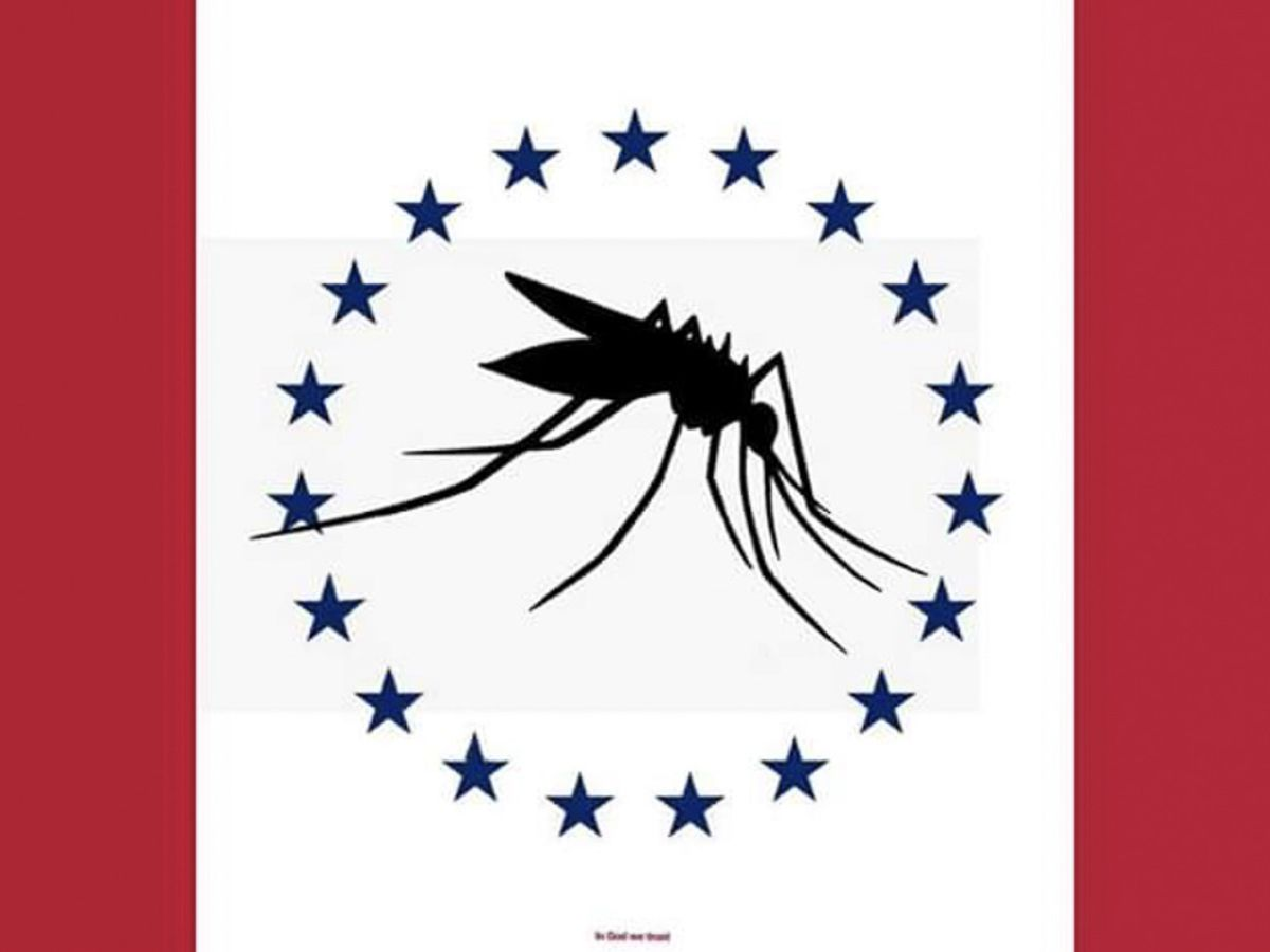 Creator of the infamous Mosquito Flag says design was a joke