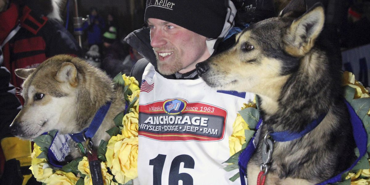 Iditarod clears four-time champion in dog-doping scandal