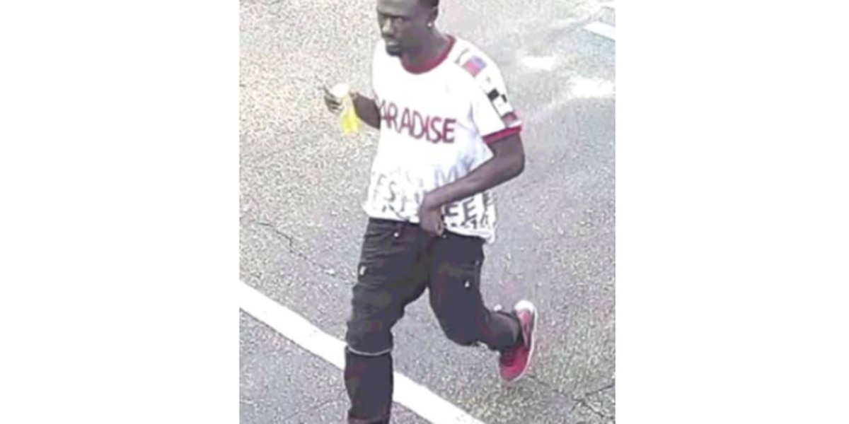 Jackson police looking for suspect wanted for burglarizing car