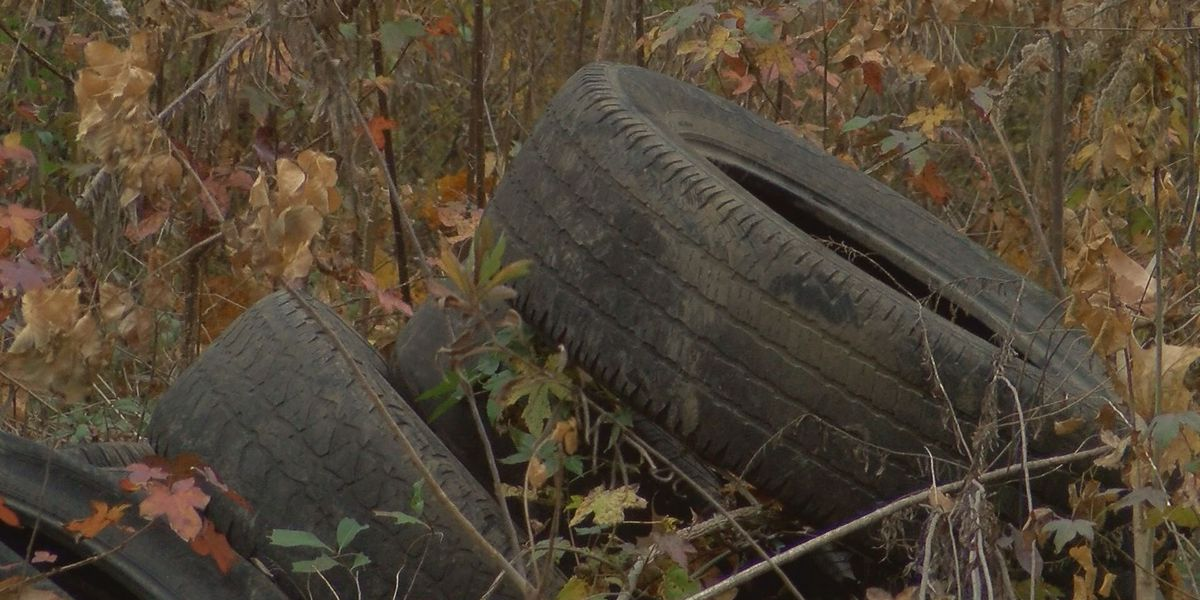 'This is ridiculous': Hundreds of tires litter vacant Jackson properties, angering residents