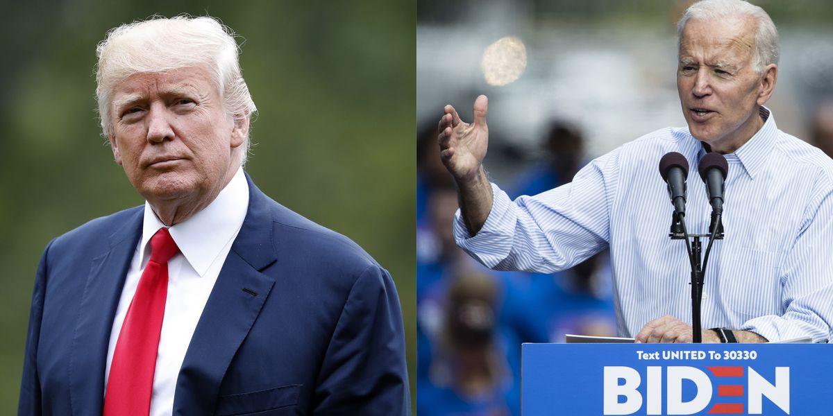 Prolific predictor of elections says Trump wins 2020 in landslide