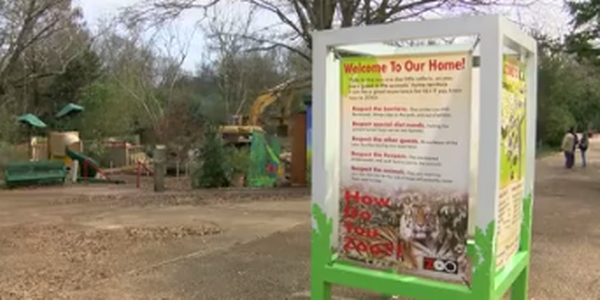 Discovery Zoo at Jackson Zoo being demolished
