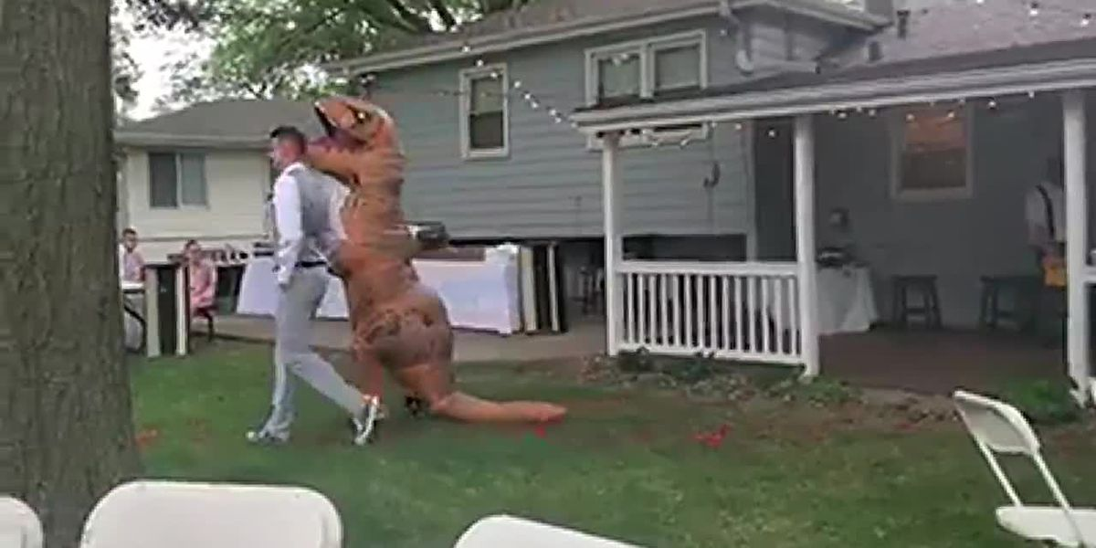 Maid of honor wears T. rex costume to sister's wedding and she was OK with it