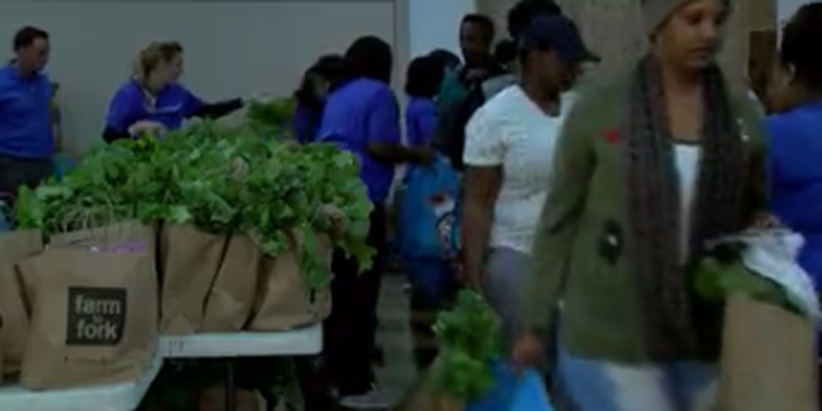 Farm to Fork giveaway draws crowds to Jackson Medical Mall