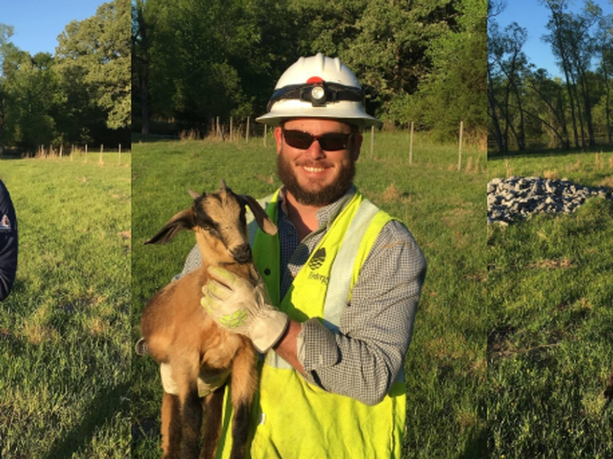 Adorable, unexpected helper joins Entergy workers to help with storm restoration