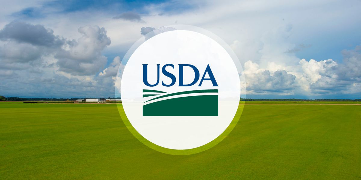 USDA approves program to feed kids in Mississippi