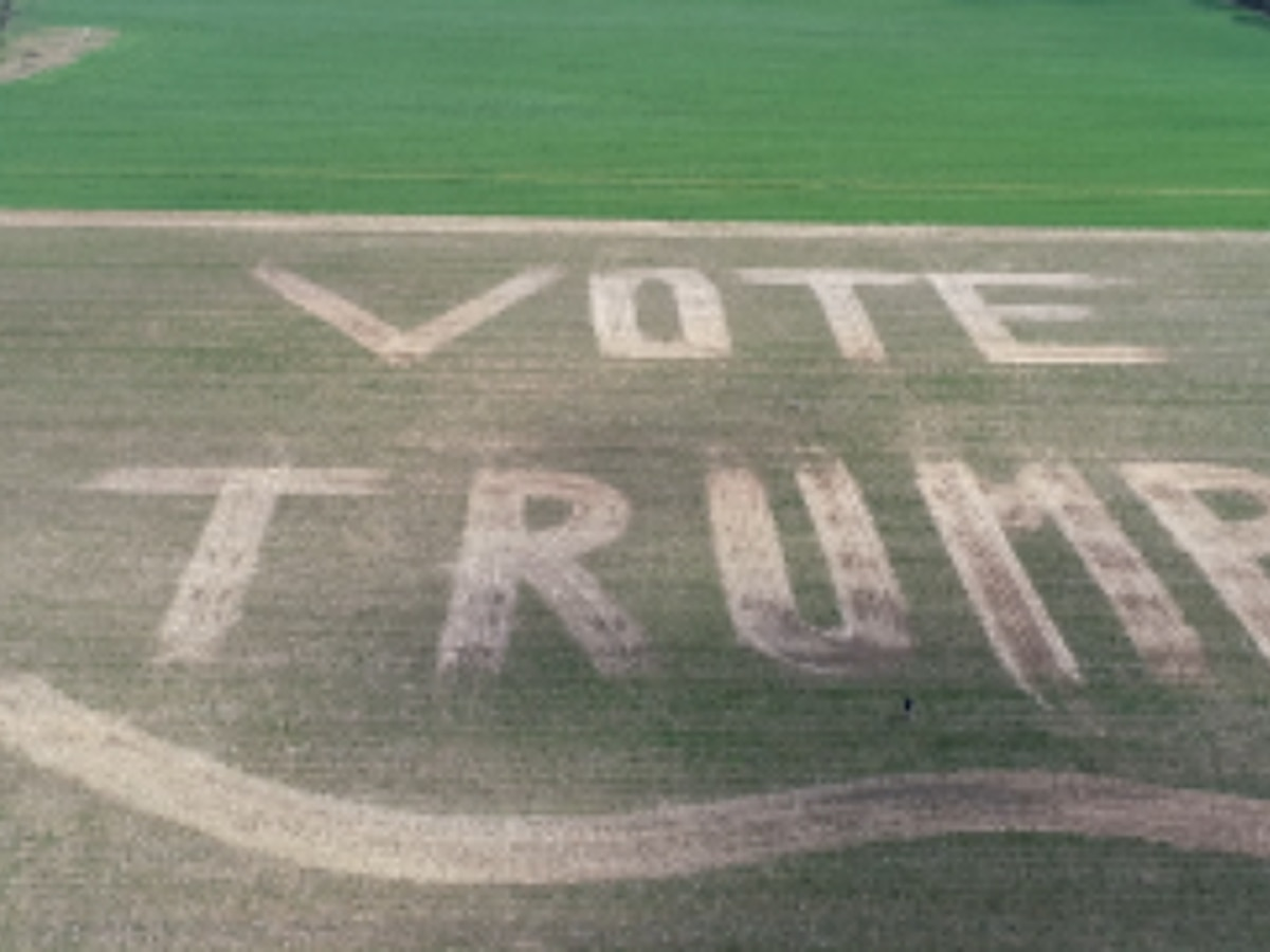 Alabama man gains attention for 'Vote Trump' design in backyard